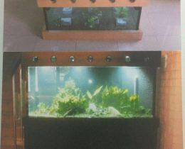 customised tank